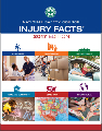 Injury Facts 2017